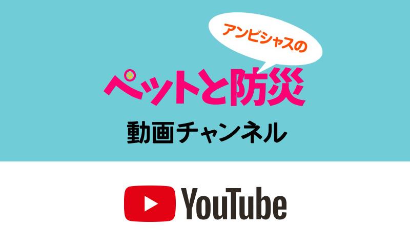 Youtube アンビシャスチャンネル